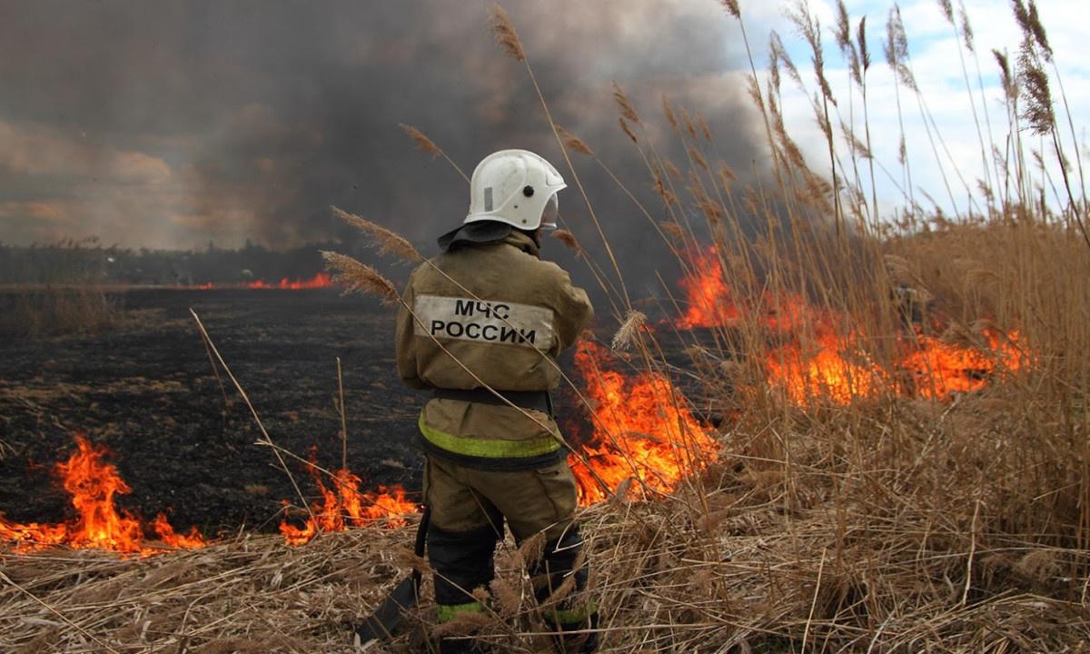Фото: 61.mchs.gov.ru