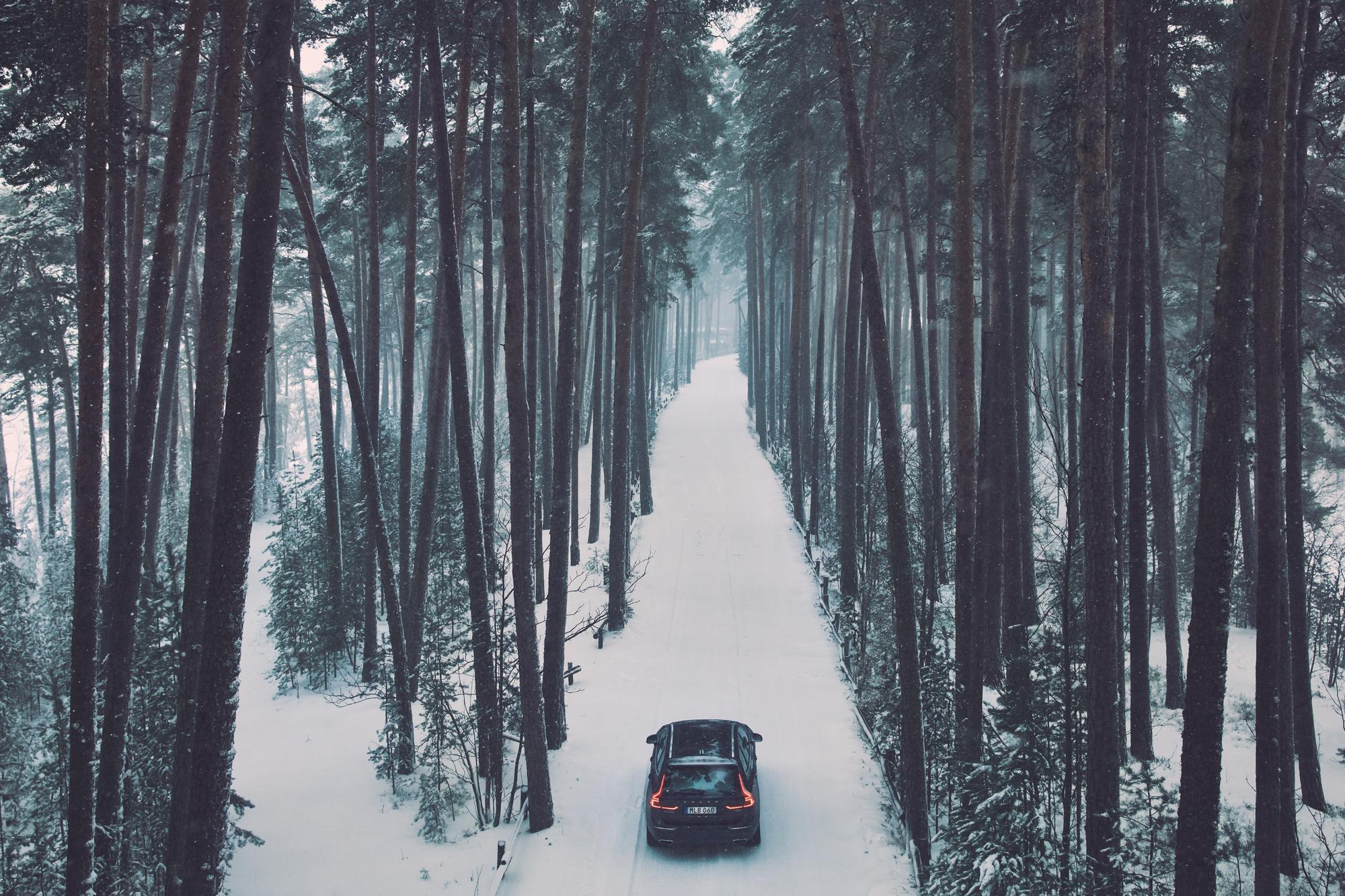 Фото:Volvo Cars