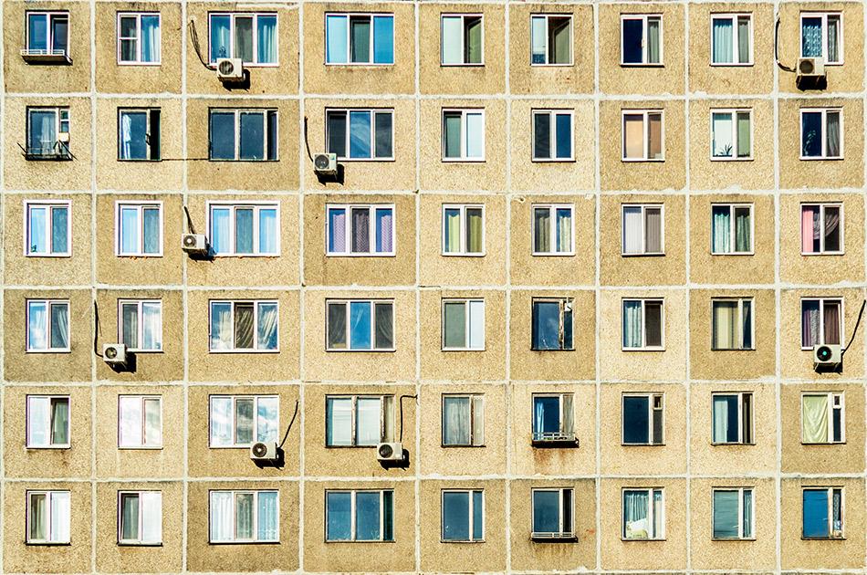 Фото: Aleksei Savin/shutterstock