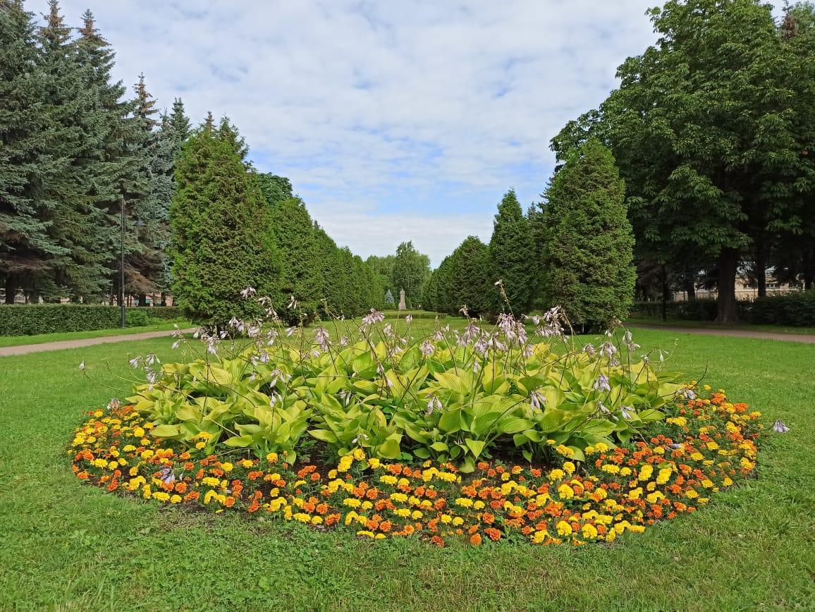 Сад Василеостровец
