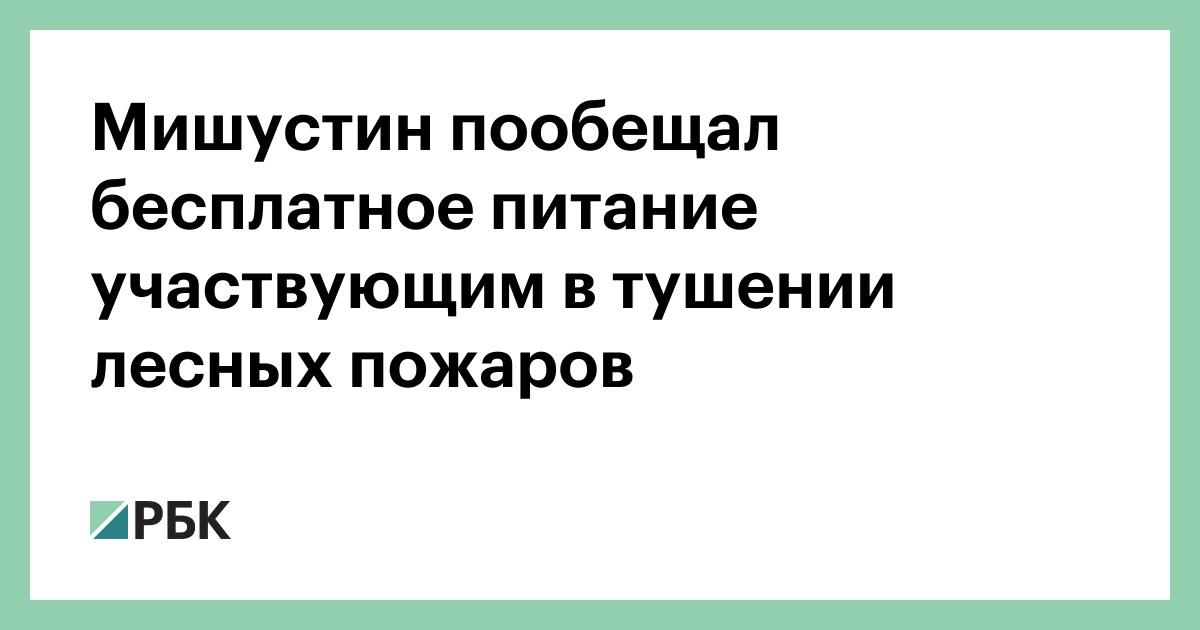 Мишустин пообещал бесплатное питание участвующим в тушении лесных пожаров