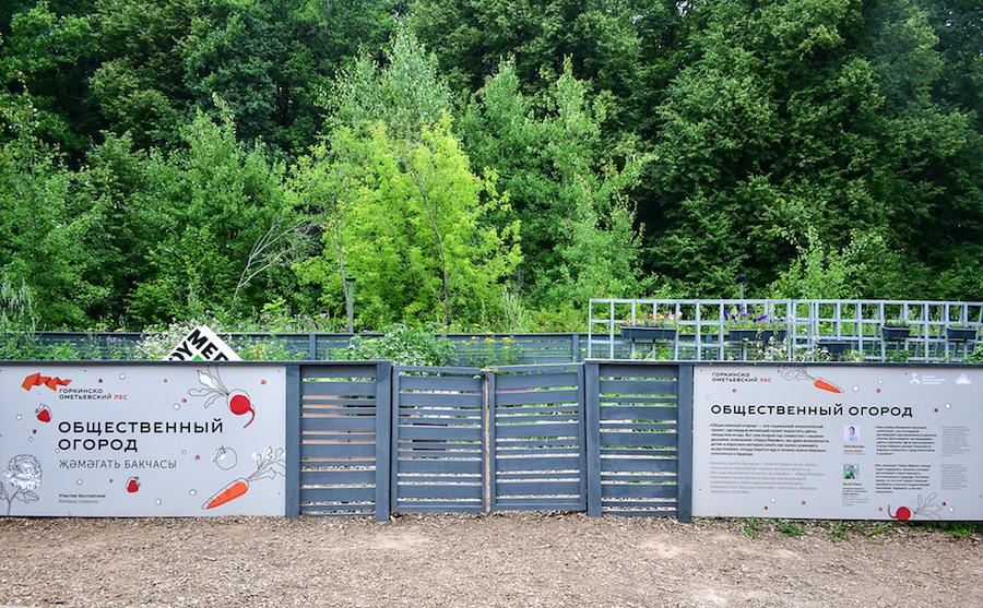 Общественный огород в Горкинско-Ометьевском лесу Казани