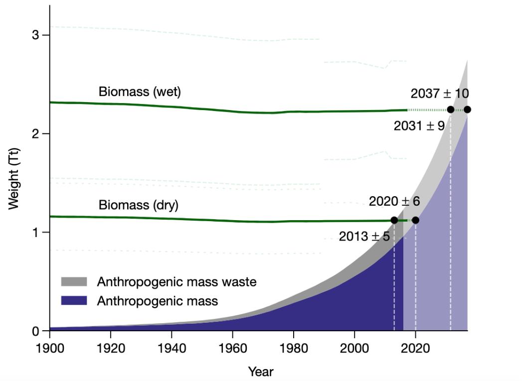Сравнение «сухой» и «мокрой» биомассы Земли (зеленые линии) с антропогенной массой