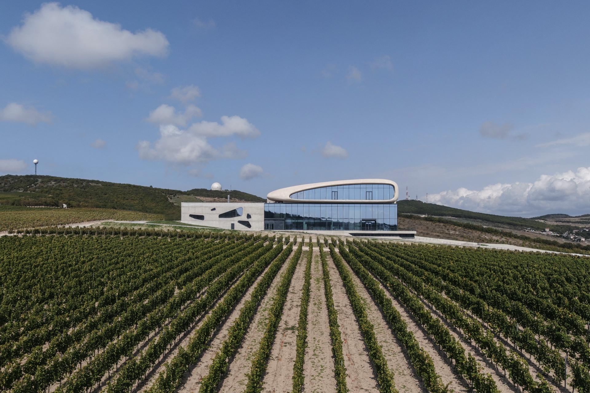 Вид на гравитационную винодельню и виноградники в Анапе.