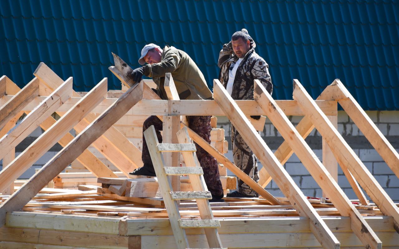 Фото: Victoria Denisova/shutterstock.com