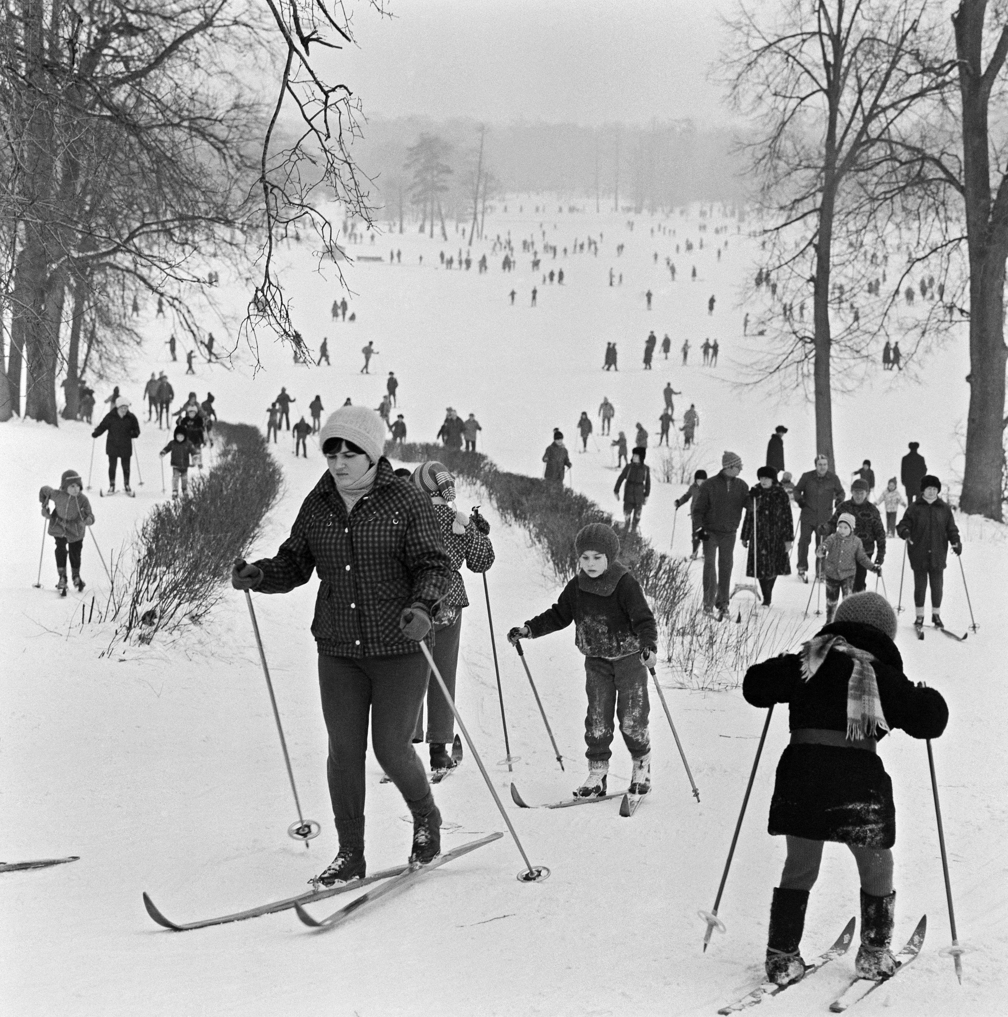 В выходной день в лесопарке «Кузьминки».1983 год