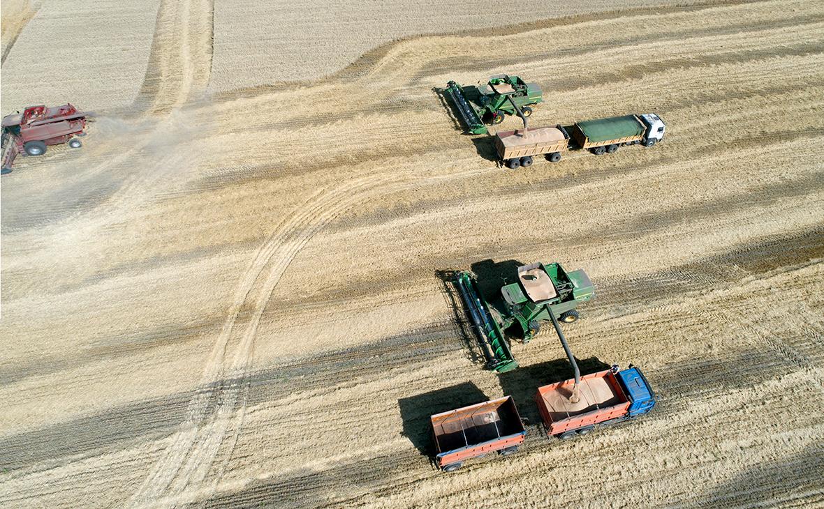 Минсельхоз объяснил предложение про передачу земли узбекским фермерам