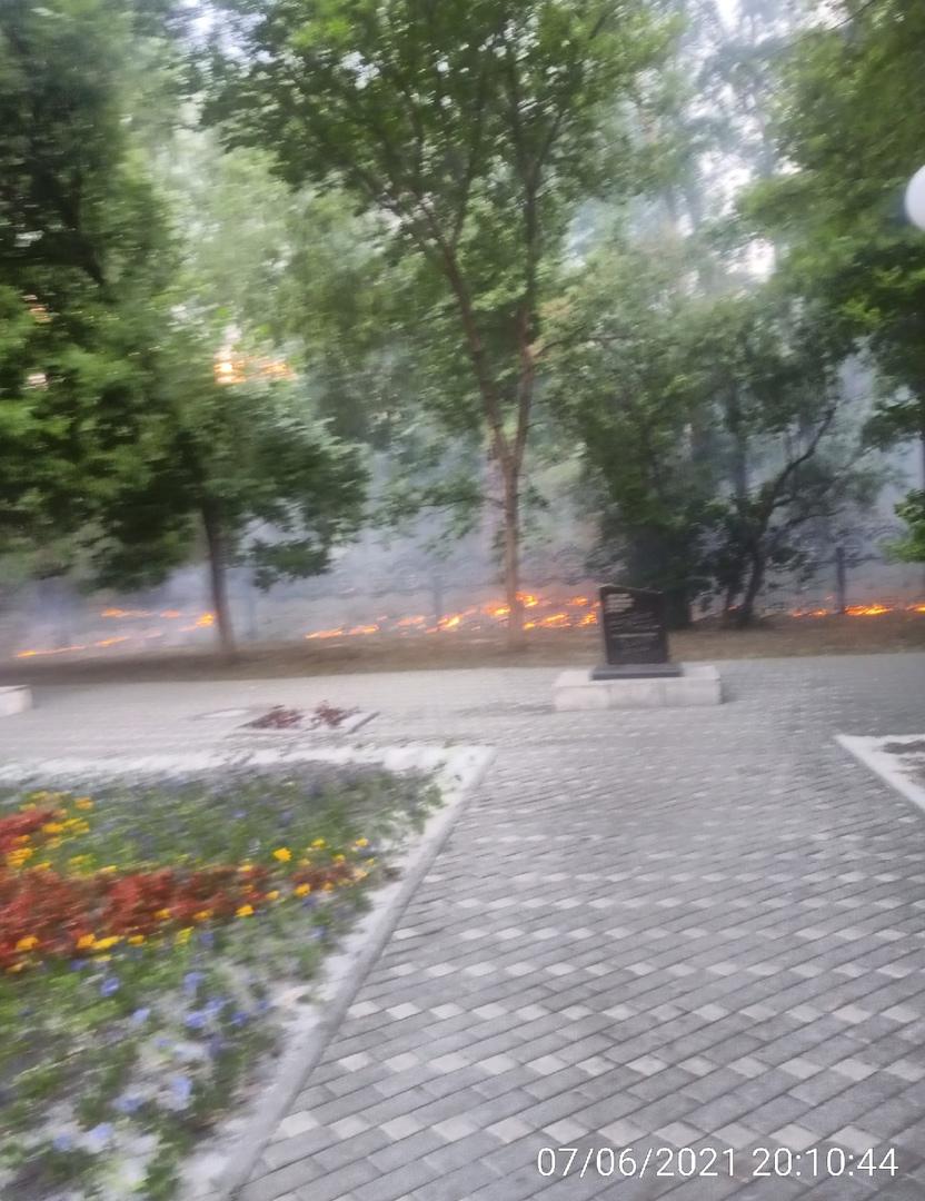 Пожар на Текутьевском кладбище