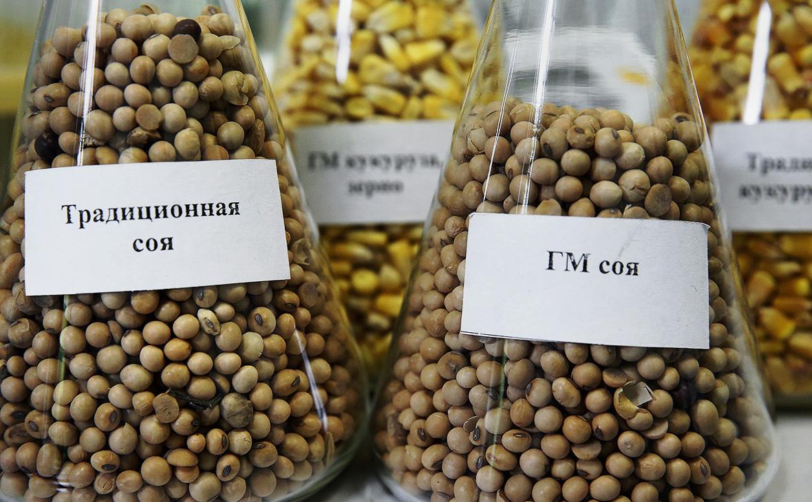 Минсельхоз поддержал допуск ГМО-продукции в Россию :: Бизнес :: РБК