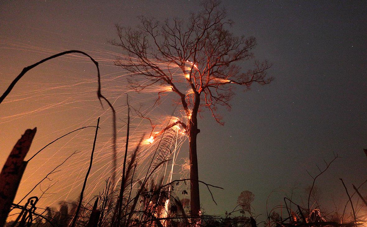 Лесные пожары в Амазонии, 2019 г.