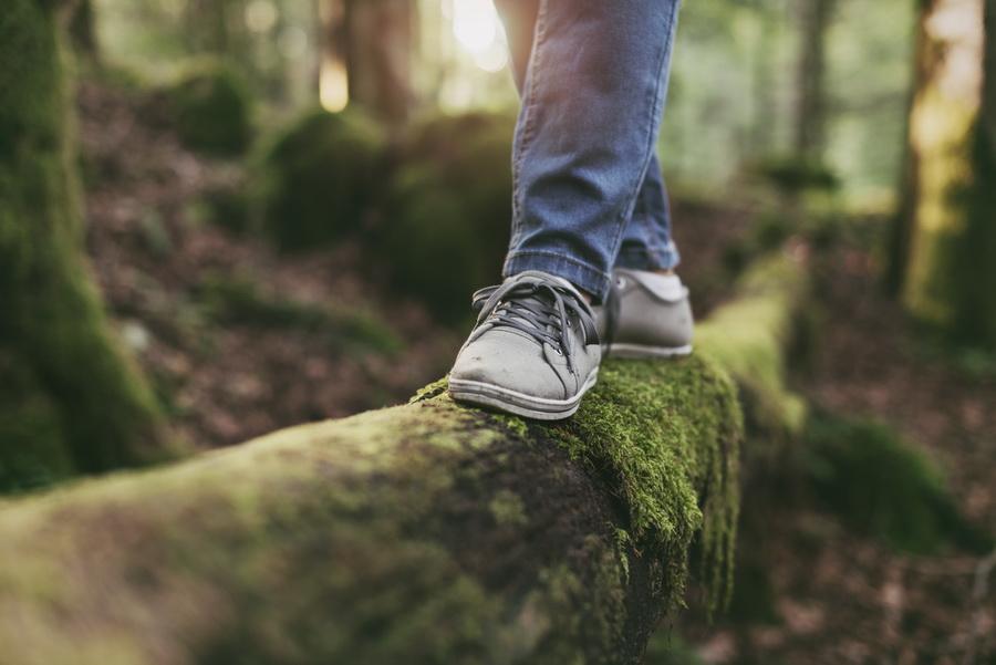 Фото:Stock-Asso / Shutterstock