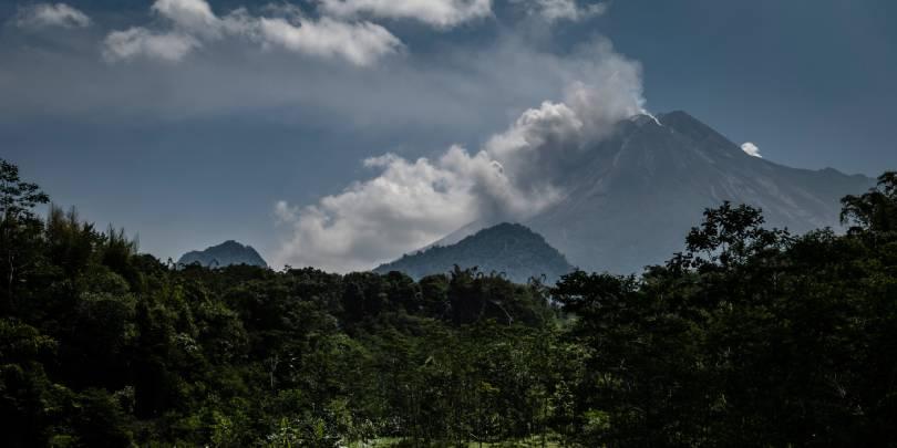 Фото: Ulet Ifansasti / Getty Images
