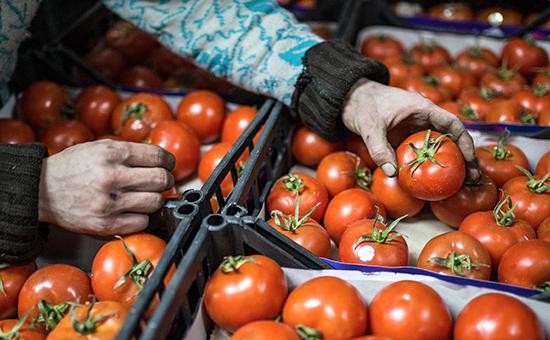 Запрет напоставки египетской плодоовощной продукции коснется втом числе итоматов