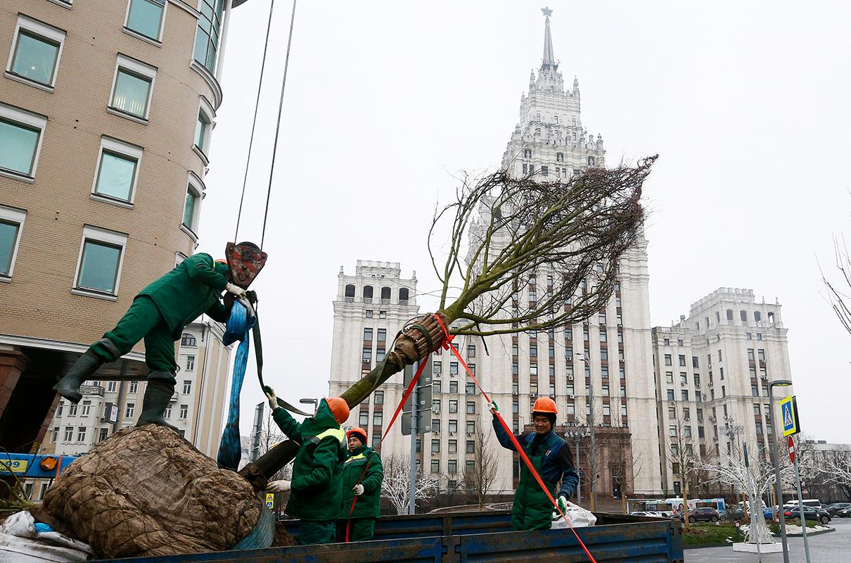 Рабочие во время высадки деревьев на Садовом кольце. 2017 год