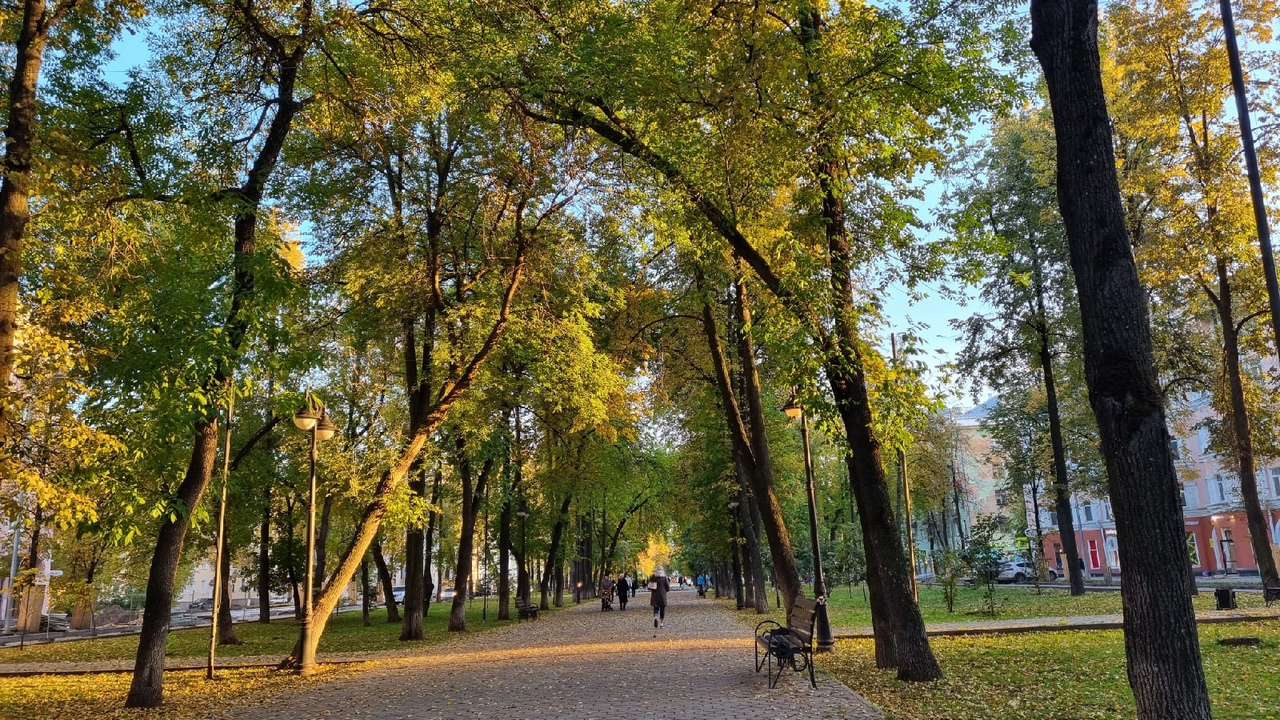 «С училища», берлинское техно и «Жизнь»: куда сходить в выходные в Перми
