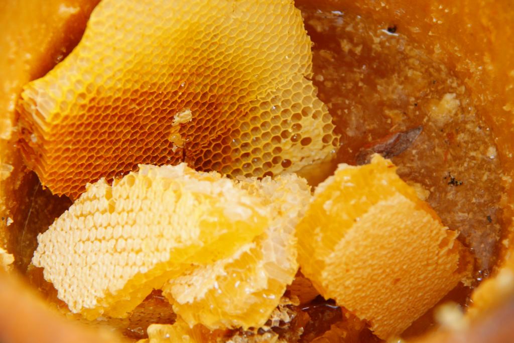 Правообладателей бренда «Башкирский мед» должно быть много — эксперты