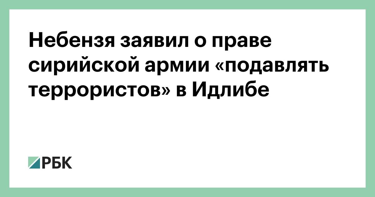 Небензя заявил о праве сирийской армии «подавлять террористов» в Идлибе