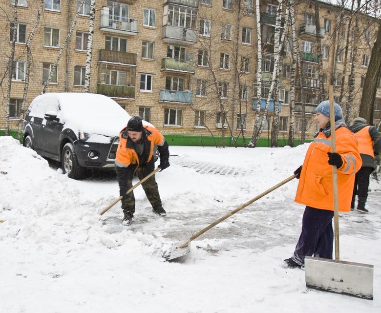 Фото: Depositphotos/Afonskaya