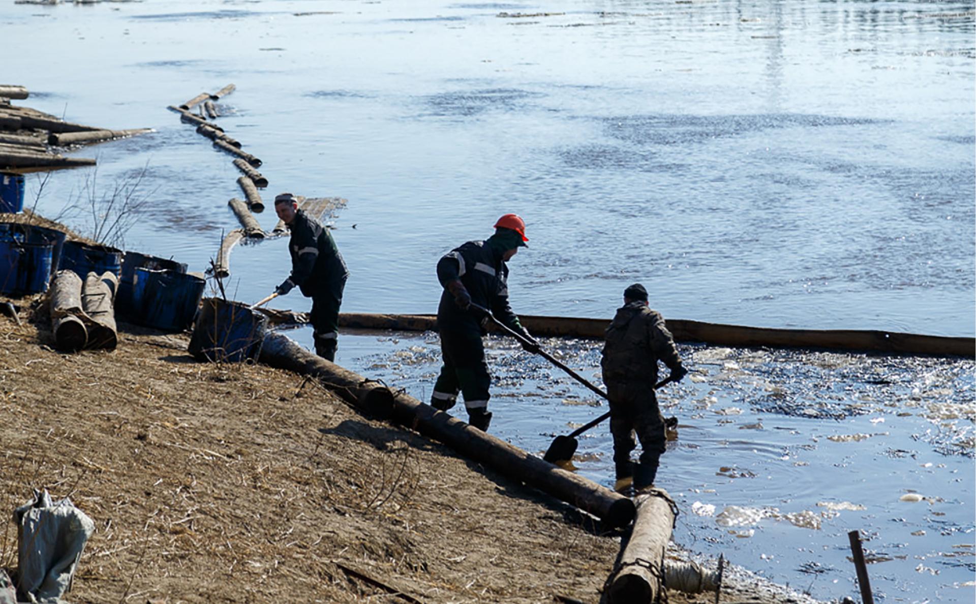Фото:Пресс-служба главы Коми / ТАСС