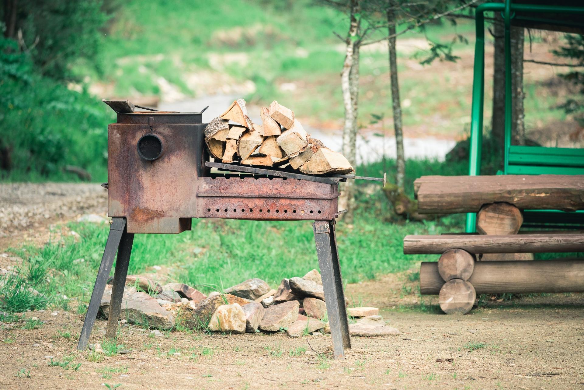 Штраф за приготовление шашлыка в необорудованном месте составит с 2021 года от 2 тыс. руб.