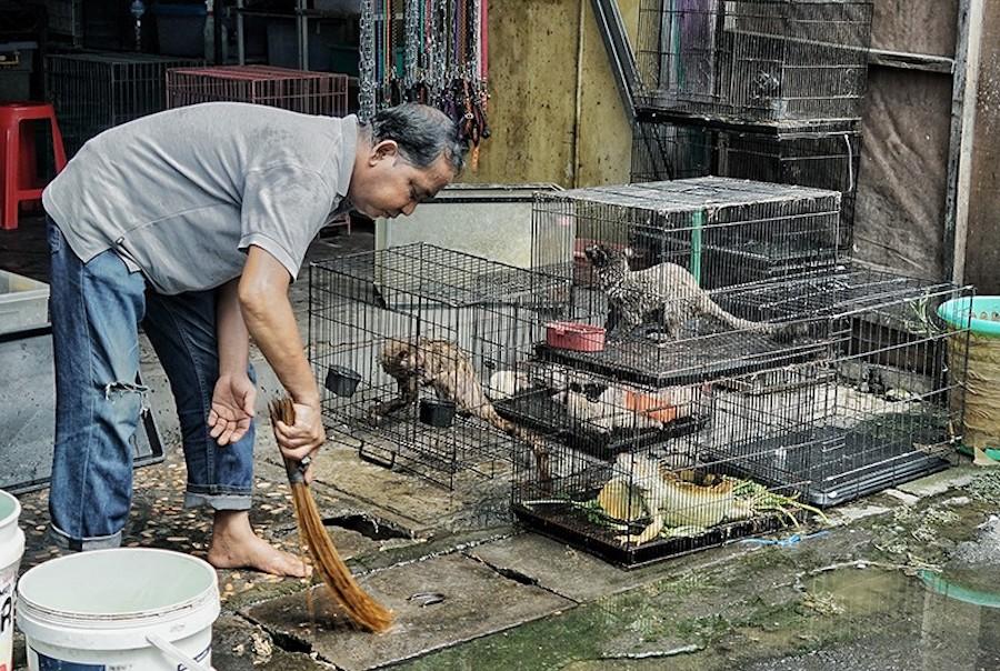 Дикий рынок во Вьетнаме