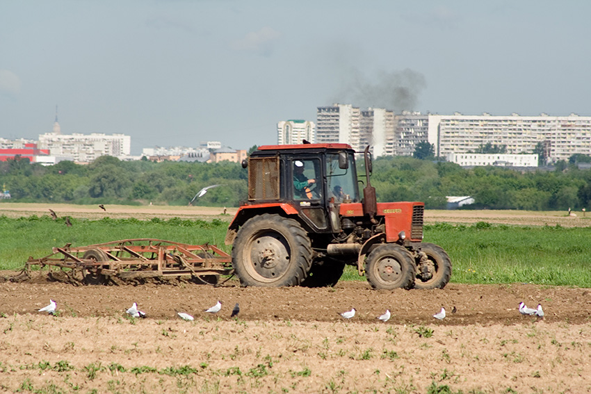 Сельскохозяйственные поля в Московской области