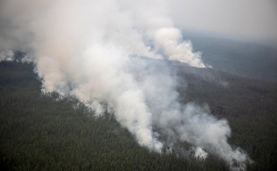 Фото: Андрей Сорокин / РИА Новости