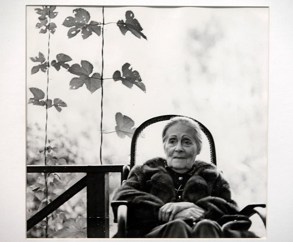 Репродукция с фотографии «Лиля Брик» (Переделкино, 1977 год)
