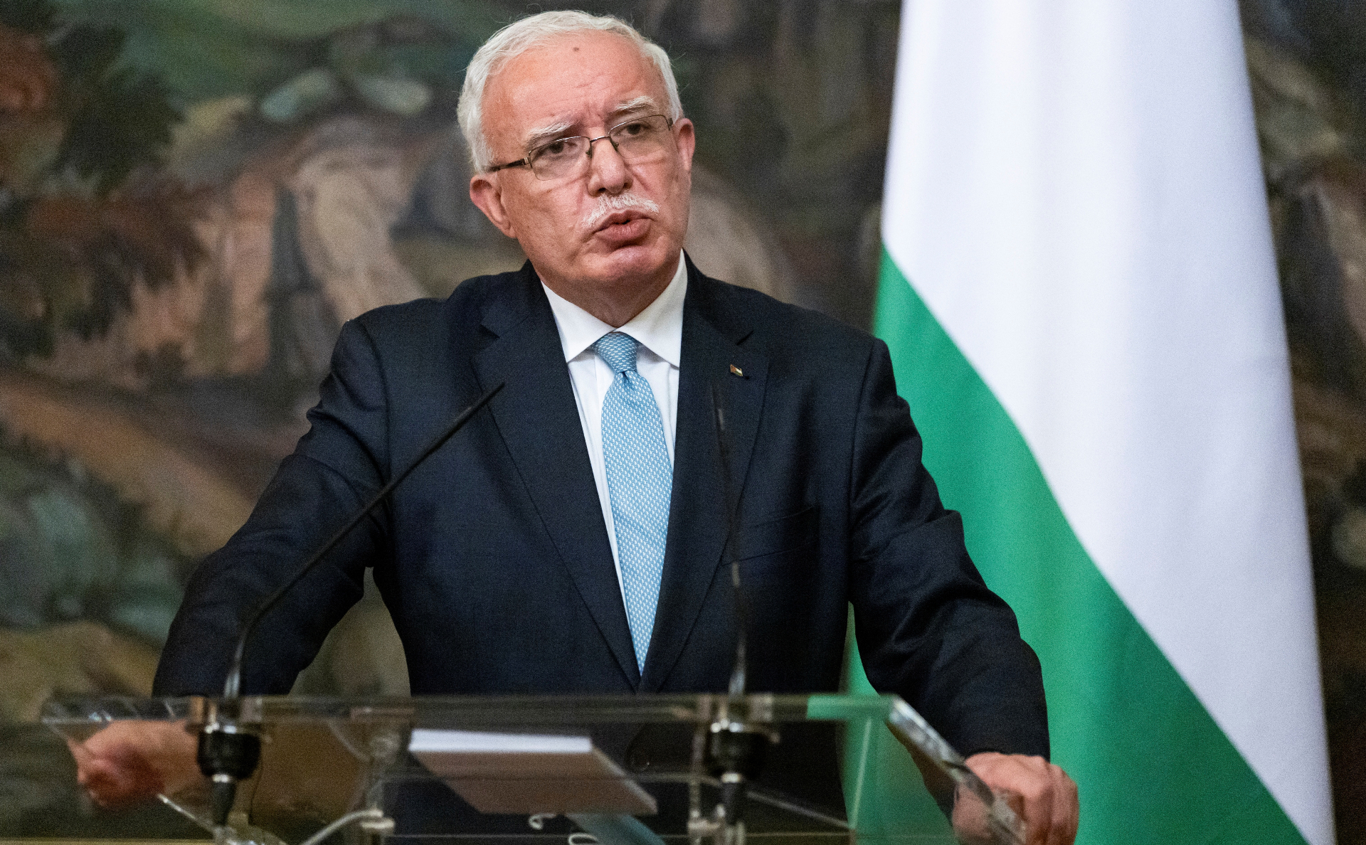 Рияд аль-Малики