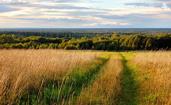 Вид национального парка «Завидово»