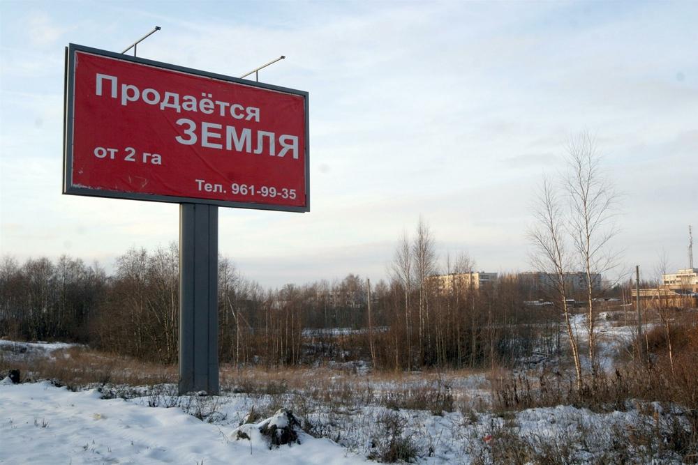 Фото: Zamir Usmanov / Russian Look