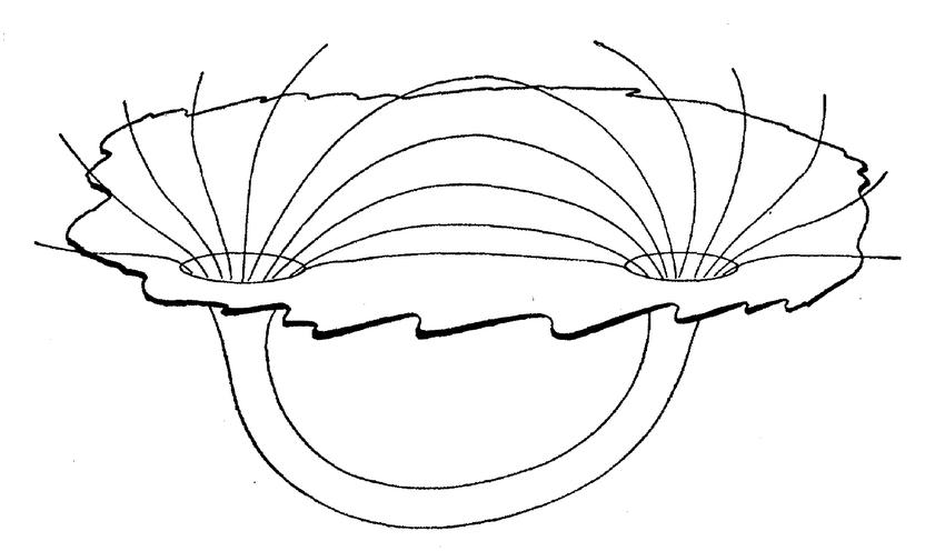 Первая диаграмма кротовой норы (Джон Уилер,1955)