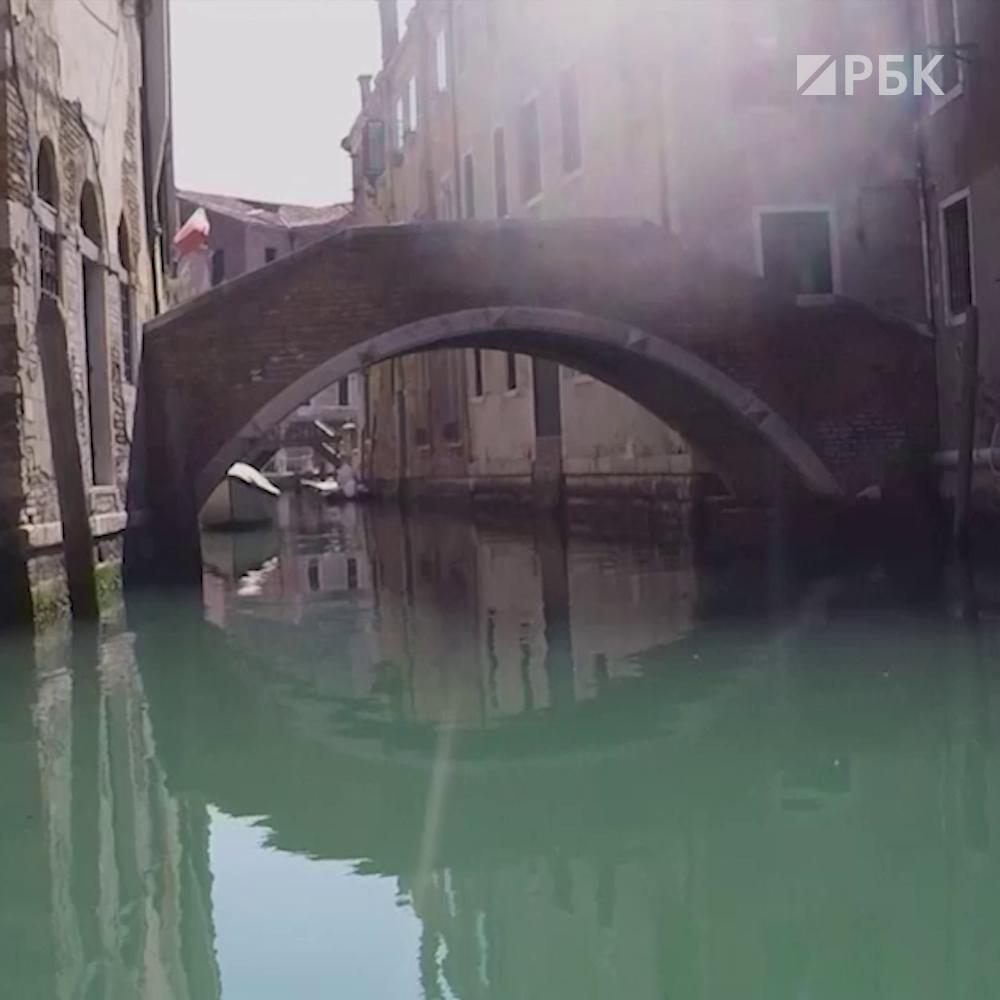 Пустые каналы в Венеции: из-за карантина вода в них очистилась