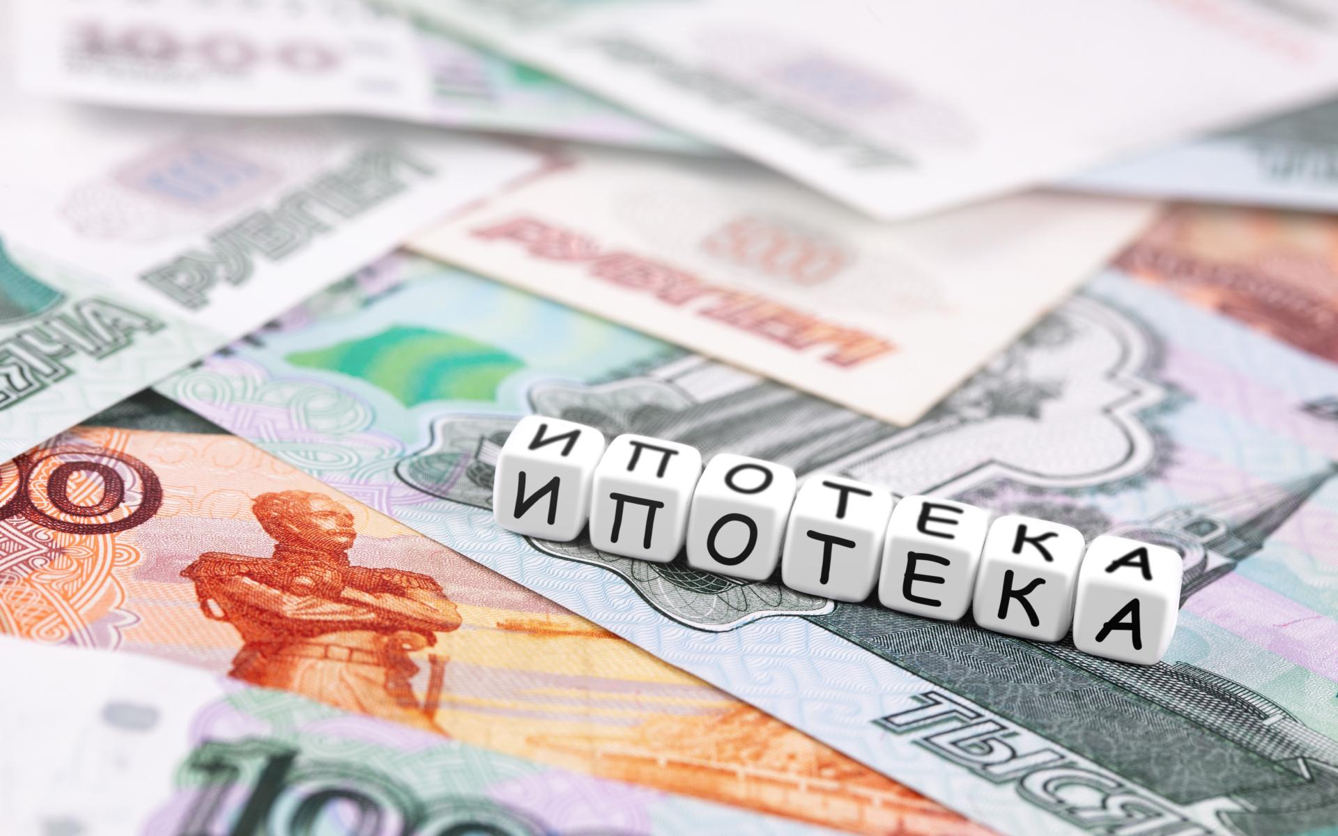 Фото: Primakov\shutterstock