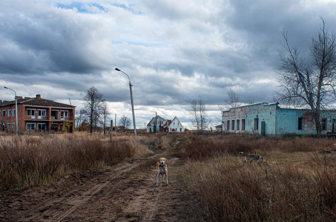 Фото:Мария Шуревская // РИАМО