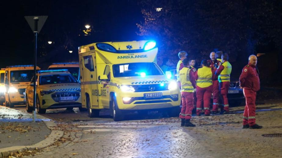 Что известно о стрелке, который убил из лука пять человек в Норвегии