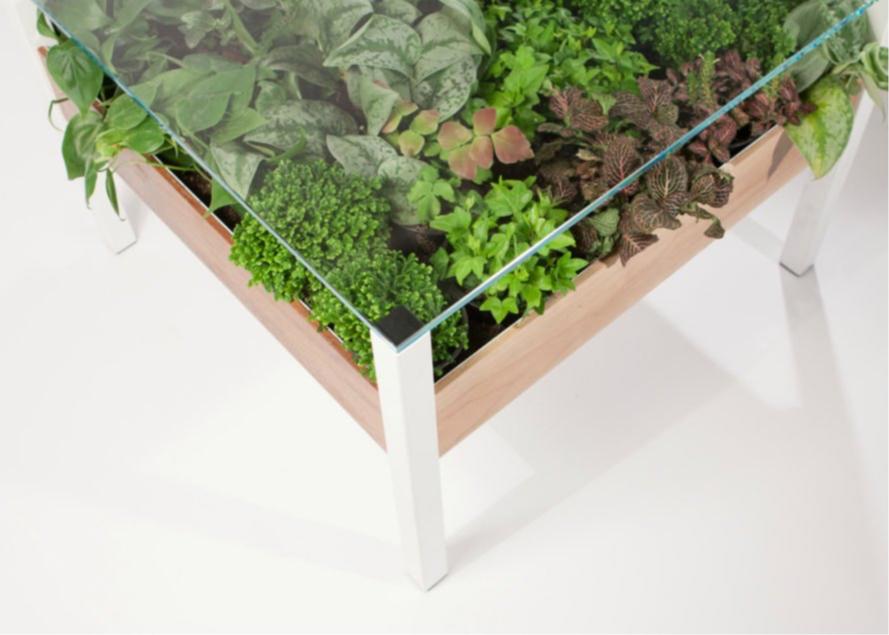 Стеклянный стол с поддоном для цветов