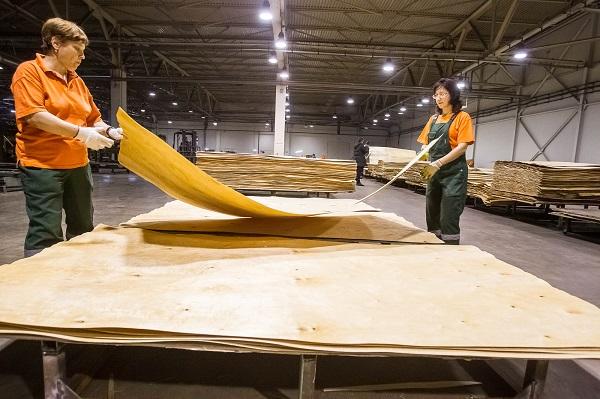 Власти обещают, что в Тобольском районе появится только фанерная фабрика
