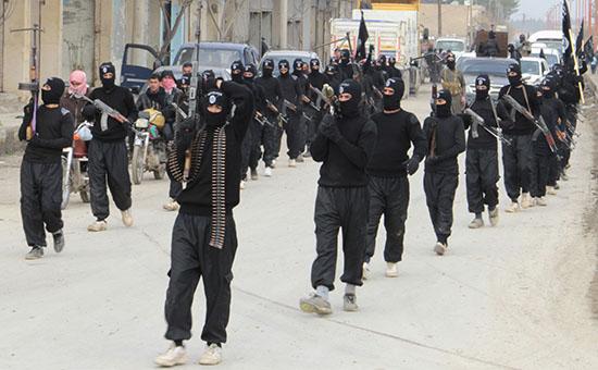 Члены террористической организации «Аль-Каида»