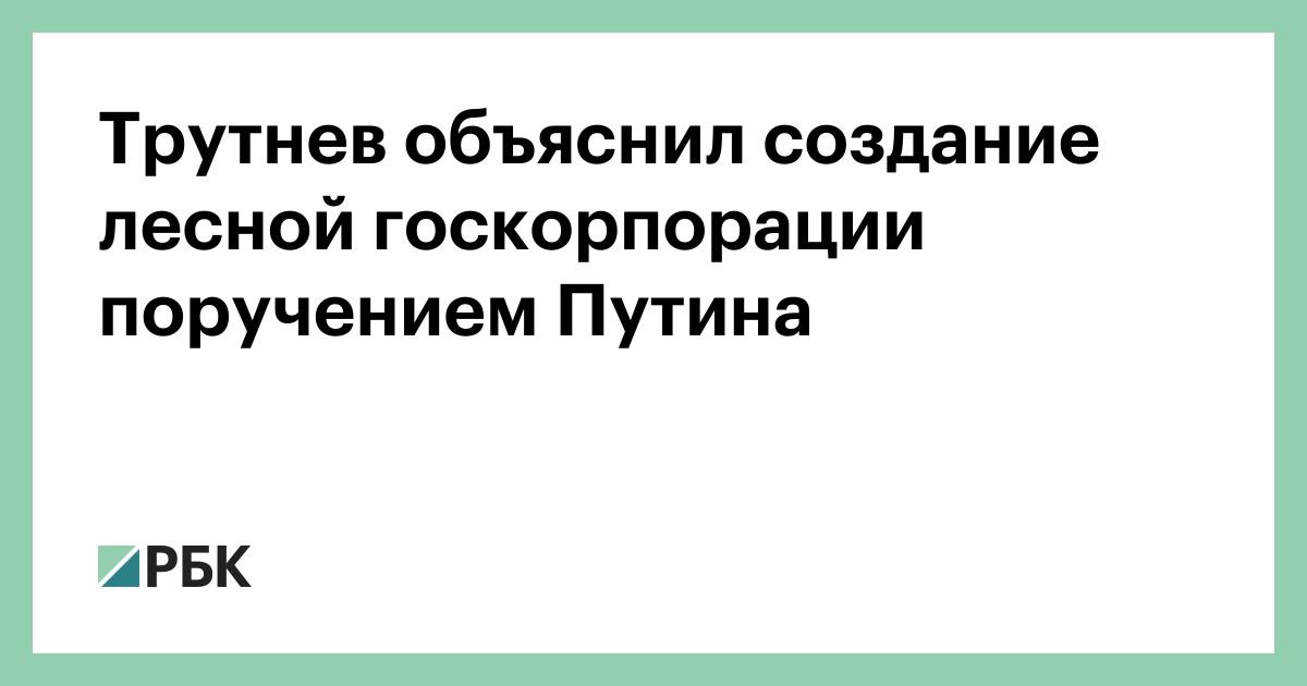 Трутнев объяснил создание лесной госкорпорации поручением Путина