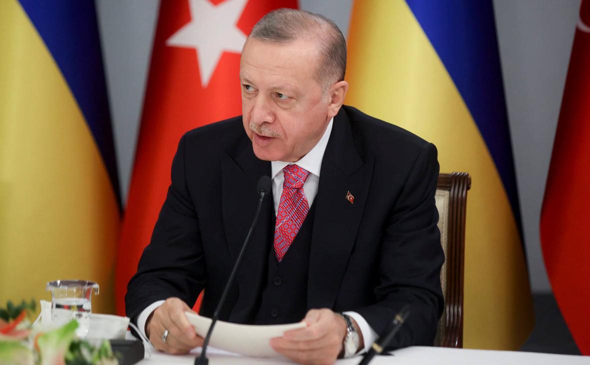 Эрдоган выступил за мирное решение противоречий России и Украины ::  Политика :: РБК
