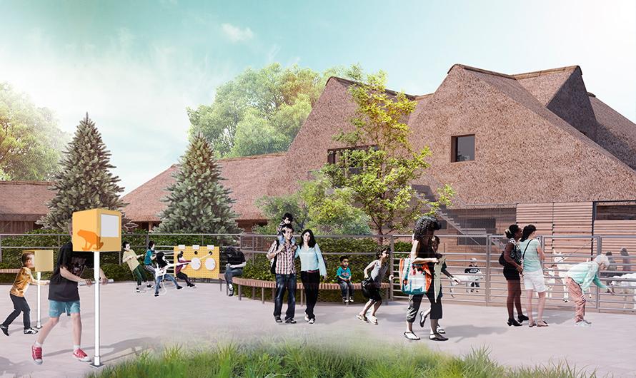 Проектное решение благоустройства территории детского зоопарка