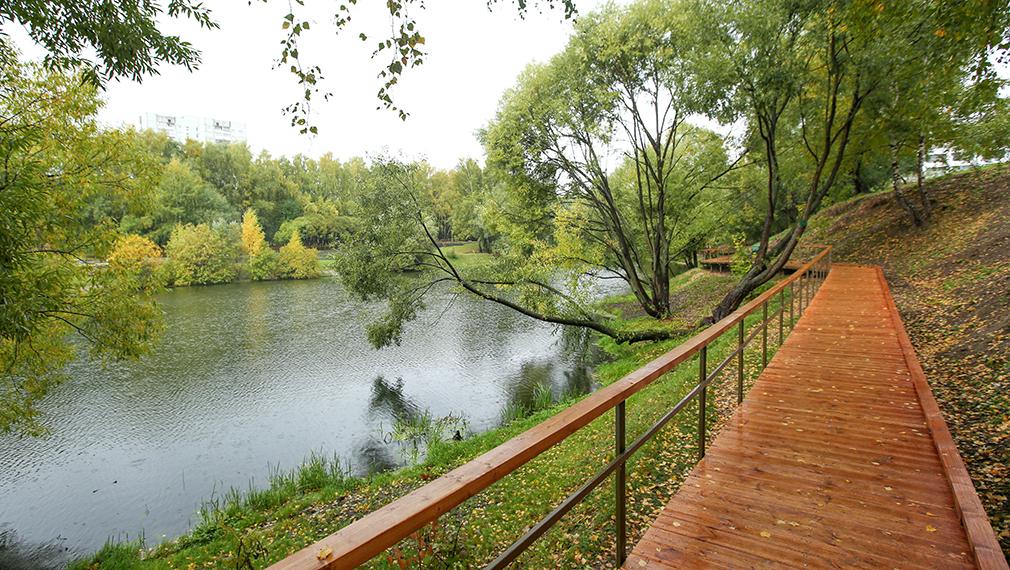 Парковая зона в районе Бирюлево Восточное возле Верхнего и Нижнего Бирюлевских прудов