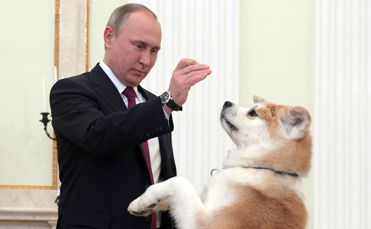 Владимир Путин с собакой по кличке Юмэ