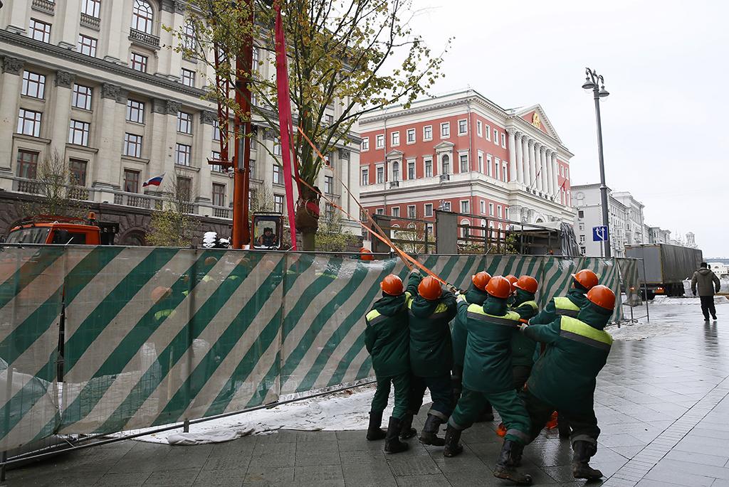 Высадка деревьев—завершающий этап благоустройства участка Тверской попрограмме «Моя улица»