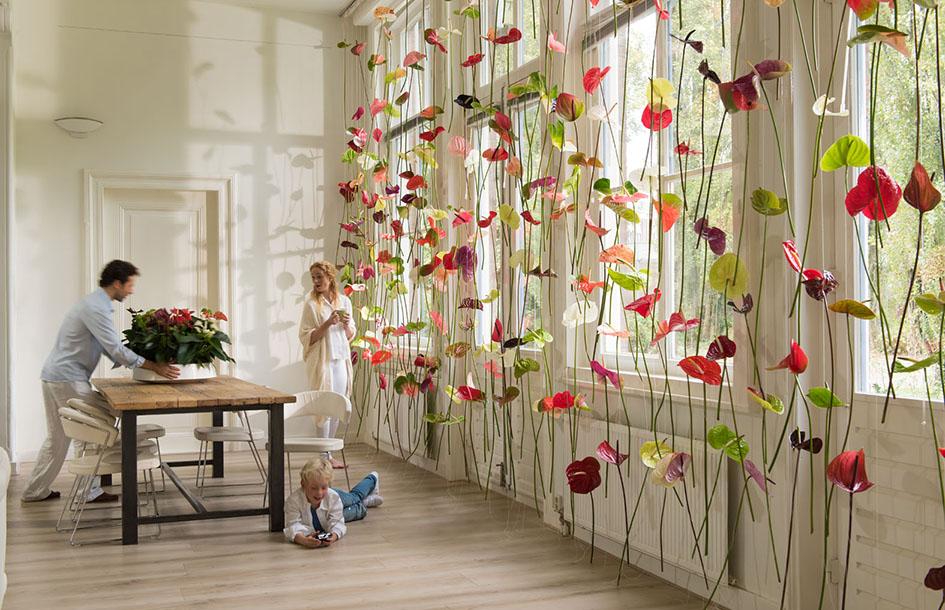 Фото:bloomifique.com