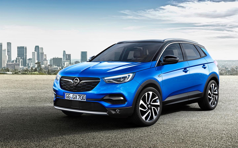 <p>Opel Grandland X</p>