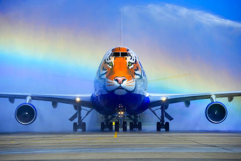 Что будет согромным флотом «Трансаэро», второго после«Аэрофлота» перевозчика поколичеству самолетов (один изних—нафото), поканеясно