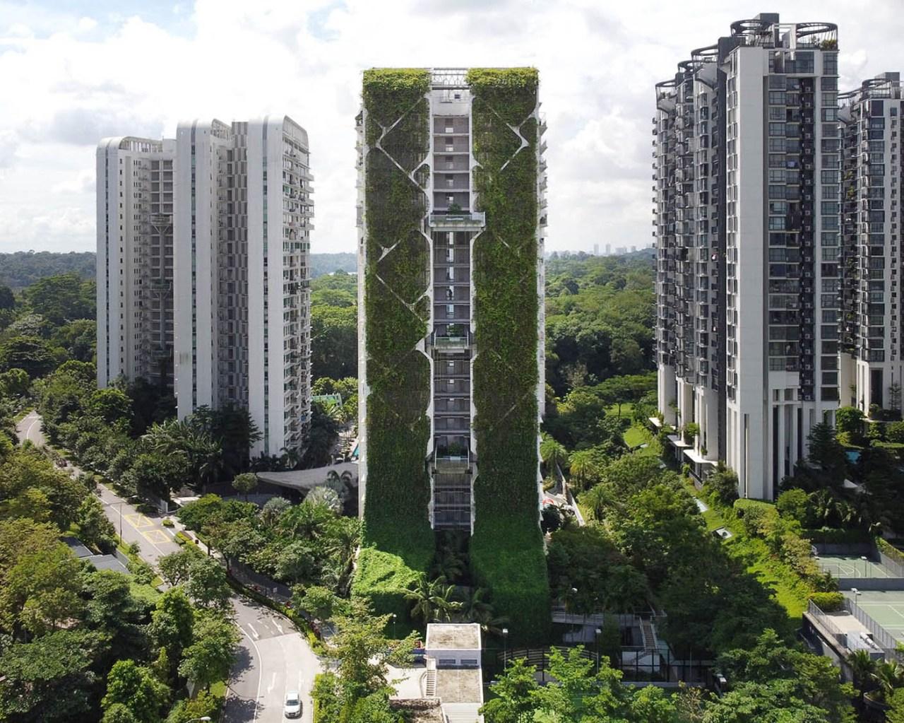 Жилой дом «Tree House» в Сингапуре входит в «Книгу рекордов Гиннесса» как самый большой вертикальный сад в мире. Здание построено из экологически чистых материалов, а растения на стенах уменьшают углеродный след путем фильтрации загрязняющих веществ и углекислого газа из воздуха. Окна спроектированы с учетом жаропонижающих технологий, помогающих сохранить в доме прохладу в течение дня, что помогает сэкономить энергию на кондиционировании