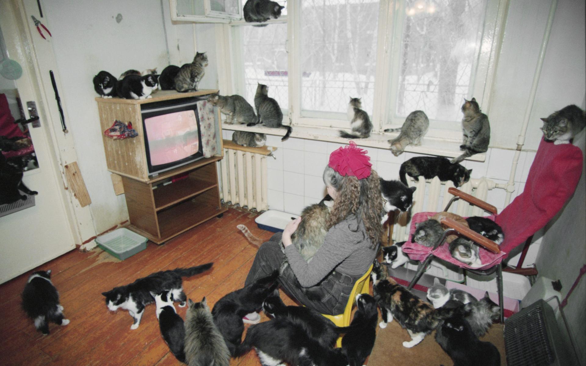 Фото: Зинин Владимир/Фотохроника ТАСС